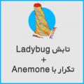 ladybuganemone