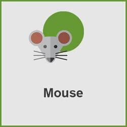 پلاگین Mouse