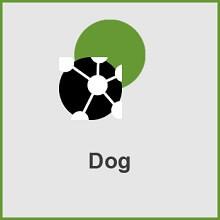 پلاگین Dog
