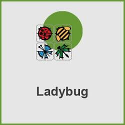 پلاگین Ladybug