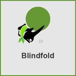 پلاگین Blindfold