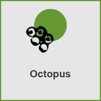 پلاگین Octopus