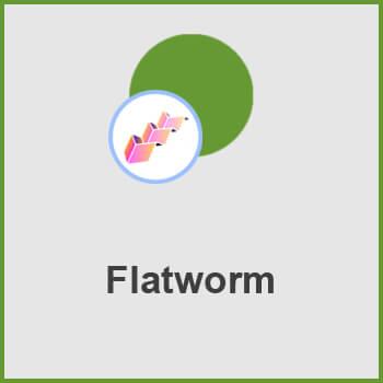 پلاگین Flatworm