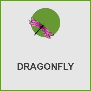 پلاگین DRAGONFLY