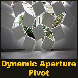 Dynamic Aperture - Pivot