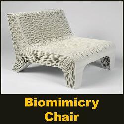 Lilian van Daal's 3D-printed Biomimicry chair