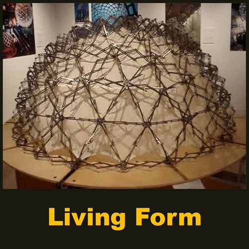 Living Form - Parametric Design