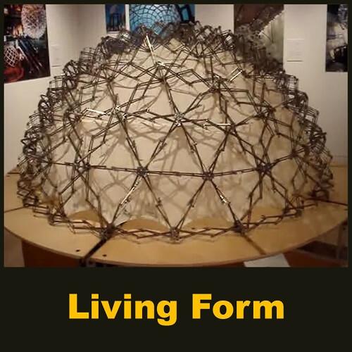 Living Form - Parametric Design