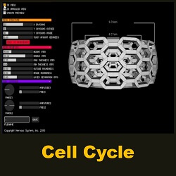 Cell Cycle by Nervous System