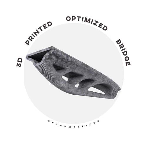 3D Printed Optimized Bridge